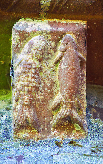 Norman Romanesque exterior corbel no 70 - sculpture of two fish swimming upwards. A fish was used by early Christians to symbolise Jesus Christ . The Norman Romanesque Church of St Mary and St David, Kilpeck Herefordshire, England. Built around 1140