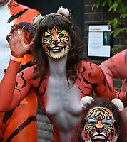 LONDON, UK, AUG 10 2017: Fundraisers streak naked through ZSL London Zoo to help tigers.  ZSL London Zoo, run by international conservation charity the Zoological Society of London (ZSL), works to protect tigers and their habitats around the world, and is encouraging feline fans to help raise big cash for the big cats. London, UK, August 10th, 2017.<br /> CAP/JOR<br /> &copy;JOR/Capital Pictures /MediaPunch ***NORTH AND SOUTH AMERICAS ONLY***