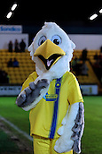 15.01.2013. Torquay, England. The Torquay United Mascot before the League Two game between Torquay United and Exeter City from Plainmoor.