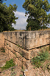 Ruins of the Old Testament city of Dan in the Tel Dan Nature Reserve in Galilee in northern Israel.  In front of the wall is a wild carrot,