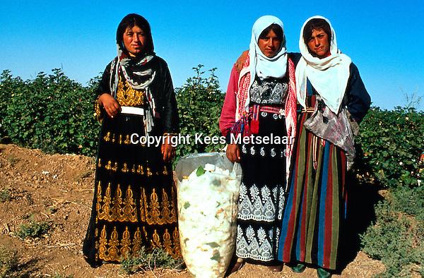 Syria, El Haseke, Sept. 1989..Young women in colorful traditional dress picking cotton in the far North East of Syria....Jong vrouwen in traditionele klederdracht tijdens de katoen pluk in het verre Noord-Oosten van Syrie...Photo  Kees Metselaar