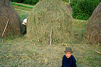 ROMANIA / Maramures / Budesti / September 2006..A young boy waits for his grandfather to finish making a haystack for the winter...© Davin Ellicson / Anzenberger