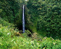 Akaka Falls, Big Island, Hawaii, USA.