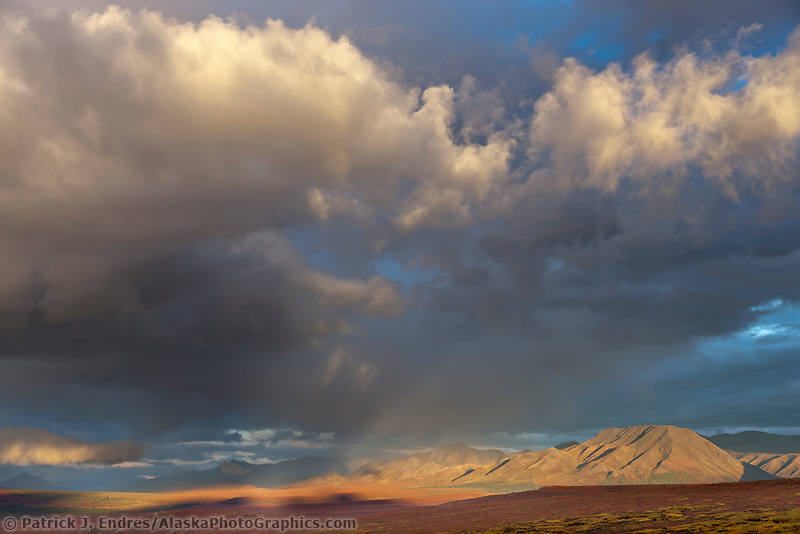 Stormy, local rain clouds hover over the Alaska Range mountains and autumn colored tundra near savage river in Denali national park.