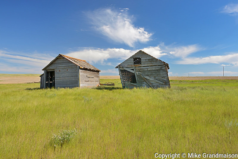 Old graneries on abandonned farm , Near Monchy, Saskatchewan, Canada