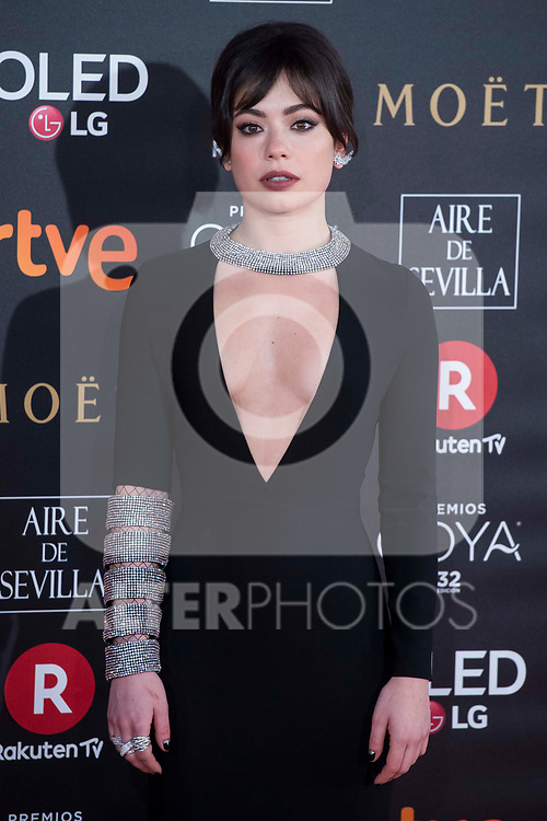 XXX attends red carpet of Goya Cinema Awards 2018 at Madrid Marriott Auditorium in Madrid , Spain. February 03, 2018. (ALTERPHOTOS/Borja B.Hojas)