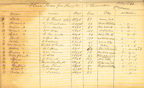 Entry List for the second Dubin to Cork race of 1861