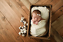 Piper W Newborn Session