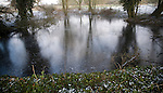Ice forming on pond surface in cold winter weather, Sutton, Suffolk, England