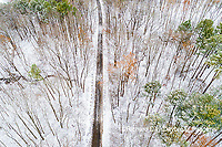 63877-00813 Trees and road with a dusting of snow aerial view Stephen A. Forbes State Park Marion Co. IL