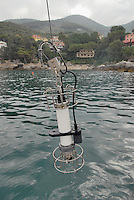 - campaign of surveys performed by CNR, ENEA and other international scientific institutes for waters monitoring in the gulf of La Spezia, for study of climatic changes effects on currents and marine ecosystem; .recovery of probe for control of water temperature, salinity and other parameters..- campagna di rilevamenti svolta dal CNR, dall'ENEA e numerosi altri istituti scientifici internazionali per il monitoraggio delle acque nel golfo di La Spezia, finalizzata allo studio degli effetti dei cambiamenti climatici sulle correnti e sull'ecosistema marino; recupero della sonda per il controllo di temperatura, salinità e altri parametri dell'acqua