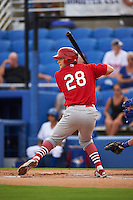 Palm Beach Cardinals designated hitter Collin Radack (28) at bat during the first game of a doubleheader against the Dunedin Blue Jays on July 31, 2015 at Florida Auto Exchange Stadium in Dunedin, Florida.  Dunedin defeated Palm Beach 7-0.  (Mike Janes/Four Seam Images)