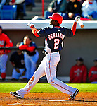 3 March 2009: Washington Nationals' center fielder Roger Bernadina hits a walk-off, 3-run homer in the bottom of the ninth during a Spring Training exhibition game against Italy at Space Coast Stadium in Viera, Florida. The Nationals defeated Italy 9-6. Mandatory Photo Credit: Ed Wolfstein Photo