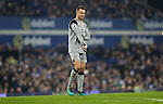 Simon Mignolet of Liverpool during the English Premier League match at Goodison Park, Liverpool. Picture date: December 19th, 2016. Photo credit should read: Lynne Cameron/Sportimage