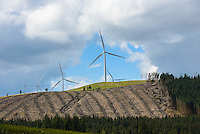 Harvested forest and wind farm near Moffat, Dumfries and Galloway, south-western Scotland.