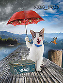 PAUL,REALISTIC ANIMALS, REALISTISCHE TIERE, ANIMALES REALISTICOS, paintings+++++NW_Fruit-Cat-I,USLGNW10,#a#, EVERYDAY ,funny photos
