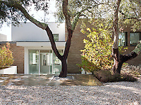 The entrance to a contemporary house is reached by steps leading down from the garden.