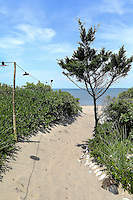 sand pathway to the sea