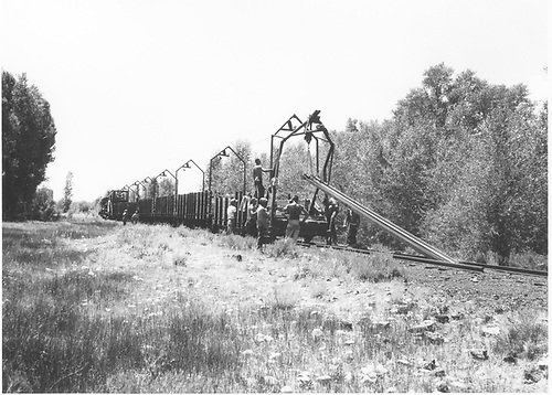 Brinkerhoff dismantling train pulling up D&amp;RGW rails in the Gunnison area.<br /> D&amp;RGW  Sargent-Gunnison area, CO  1955