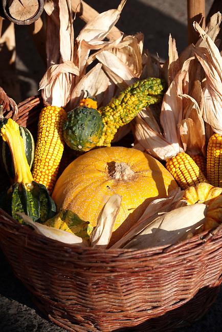Traditional Hungarian Harvest Festival vegetales displayed  in a basket