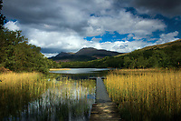 Ben Lomond and the Dubh Lochan, near Rowardfennan, Loch Lomond and the Trossachs National Park, Stirlingshire