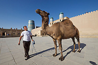 Uzbekistan, Khiva. Khiva's last camel waiting to be photographhed with tourists.