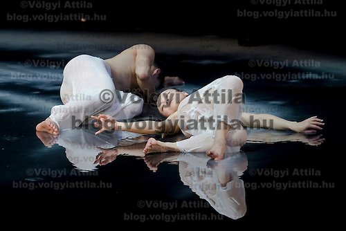 Cloud Gate Dance Theatre of Taiwan presents their piece called Moon Water Budapest, Hungary. Monday, 27. April 2009. ATTILA VOLGYI
