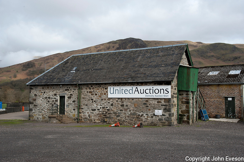 Auction mart at Dalmally, Argyll, Scotland.