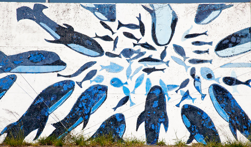Mural depicting the sea life to be found in the sea of the coast of Kochi, Japan.