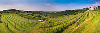 Kojsko, Goriska Brda, Slovenia. View of vineyards with Kojsko on the left and Gonjace on the right, Goriska Brda (Gorizia Hills), Slovenia, Europe