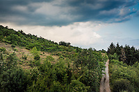 Makedonien. Udsigten fra Villa Marta i Ohrid. Foto: Jens Panduro