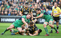 161211 Wasps v Connacht