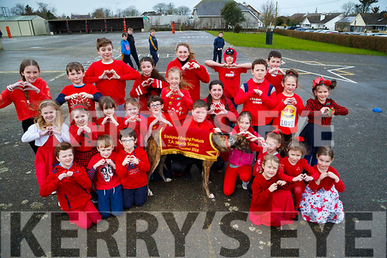 : <br /> <br /> <br /> <br /> Ardfert NS Turns Red for Recovery Haven on Valentine's Day
