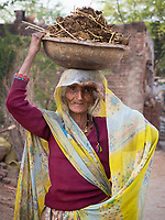 woman collecting cow dung