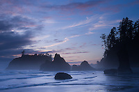 Sea Stacks, Ruby Beach, Olympic National Park, Wa.