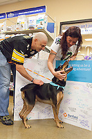 Bring Zeus Home----Ben and Melody Harworth and their children (names withheld) reunite with Zeus, their dog that they hadn't seen in 3 years, at a Banfield Hospital. in Lacey, Wa. on August 14, 2015.  Banfield employee Rachel Overby drove Zeus back to Lacey from North Carolina. His microchip identified him.
