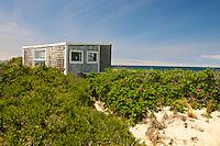 Cape Cod Dunes