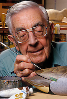 Senior man painting a darved duck decoy.