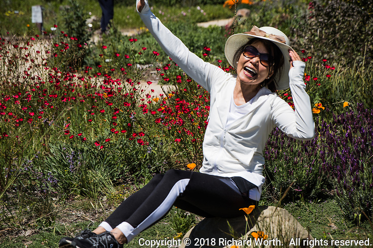 An exuberant visitor to the Quarry Lakes Regional Park poses among the native flowers planted by volunteers.