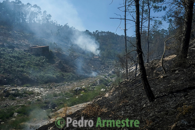 Trees smoulder near a house at the site of a wildfire in O Rosal near Pontevedra, on August 29, 2013. Spain is prone to forest fires in summer because of soaring temperatures, strong winds and dry vegetation. Last year wildfires destroyed some 150,000 hectares of land in Spain from January to July, after one of the driest winters on record. © Pedro ARMESTRE