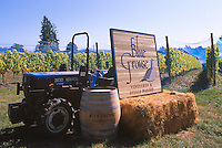 Blue Grouse Vineyards & Estate Winery, near Duncan in Cowichan Valley, Vancouver Island, BC, British Columbia, Canada