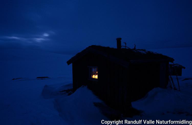 Hytte i Forollhogna nasjonalpark ---- Hut in Forollhogna national park