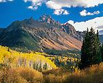Mt Sneffels and Aspen trees in autumn, Ridgeway, Colorado, John offers autumn photo tours throughout Colorado.