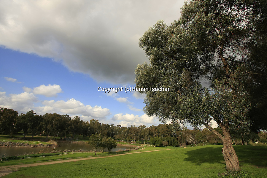 Israel, Sharon region. The source of Yarkon river in Tel Afek
