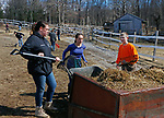 """Washington, CT-031619MK02 Nonnewaug High School students, from the  F.F.A. program (from left) Kennis McCarthy, Aleigah Procaccini and Ryan Parker along with twenty-five classmates, from the  F.F.A. program, volunteer to help with seasonal cleanup and maintenance of the barns and fields at the Humane Organization Representing Suffering Equines (H.O.R.S.E. of Connecticut) Saturday in Washington.  Chris Zanella, a four year volunteer veteran at the farm, said that this was the first of several volunteer days this year at the facility and """"With 23 horses there is always a need for volunteers."""" Marisa Bedron and  Jennifer Jedd, Nonnewaug teachers with the program, said the students were happy to volunteer by assisting with the various needs of the farm and horses, such as grooming, hand walking, cleaning paddocks and barns.  Michael Kabelka / Republican-American"""