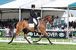 Francis Whittington riding Sir Percival III during day 2 of the dressage phase at the 2012 Land Rover Burghley Horse Trials in Stamford, Lincolnshire,UK.
