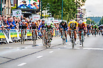 Shane ARCHBOLD, An Post - Chain Reaction, winning the bunch sprint, Arnhem Veenendaal Classic , UCI 1.1, Veenendaal, The Netherlands, 22 August 2014, Photo by Thomas van Bracht / Peloton Photos