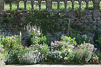 Summer border at Haddon Hall with roses climbing up the stone wall behind