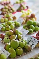 Europe/France/Normandie/Basse-Normandie/50/Batenton: Maison de la Pomme et de la Poire  - Exposition de Pommes à Cidre  //    / France, Manche, Batenton, House of the Apple and Pear Cider apples Exhibition