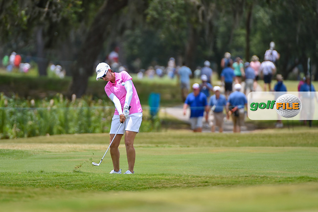 Karrie Webb (AUS) chips up on to 9 during round 2 of the 2019 US Women's Open, Charleston Country Club, Charleston, South Carolina,  USA. 5/31/2019.<br /> Picture: Golffile | Ken Murray<br /> <br /> All photo usage must carry mandatory copyright credit (© Golffile | Ken Murray)